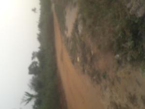 Land for sale Ajayi Apata Estate Sangotedo Ajah Lagos