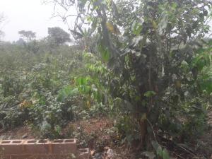 Land for sale Beside Unilag Estate Magodo Phase 1 Magodo Kosofe/Ikosi Lagos