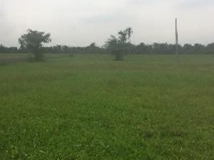Land for sale Magodo Unilag Phase 1 Magodo Kosofe/Ikosi Lagos