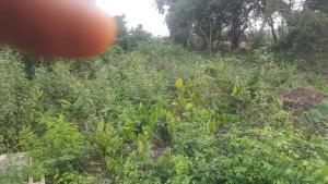 Land for sale Yaya Abatan  Ogba Lagos