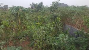 Land for sale OFEIYI UMUDIAWA COMMUNITY UMUAHIA NORTH Umuahia North Abia