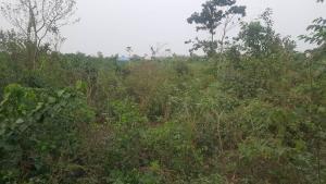 Land for sale Portharcourt Road, Regent City Owerri Imo