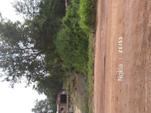 Mixed   Use Land Land for sale Gudugba Papalanto Ewekoro Ogun