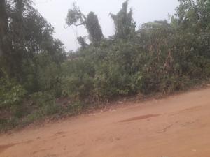 Land for sale Lotto Ofada Ogun State Mowe Obafemi Owode Ogun