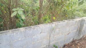 Land for sale - Aguda(Ogba) Ogba Lagos