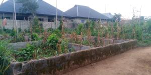 Residential Land Land for sale Barbington Macaulay Maya Ikorodu Lagos
