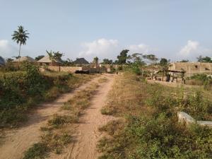 Residential Land Land for sale BEDAKU Egbeda Ibadan. Egbeda Oyo