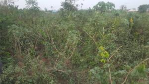 Land for sale Oribanwa Ibeju Lekki Lagos Oribanwa Ibeju-Lekki Lagos