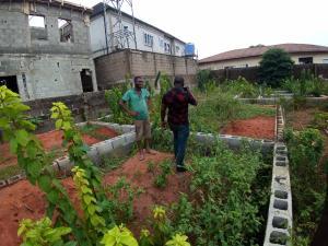 Land for sale New London Estate  Baruwa Ipaja Lagos