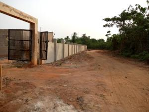 Residential Land Land for sale Nekede Owerii IMO state Owerri Imo