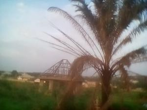 Commercial Land Land for sale Odoru, Nsukka Local Govt., Area. Nsukka Enugu