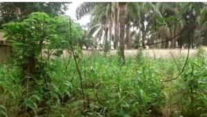 Land for sale Close to Divine Hospital  Awka South Anambra