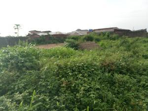Land for sale  Amule Ipaja  Ipaja road Ipaja Lagos