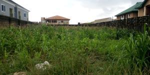 Land for sale Akinwunmi Koshmanu street pako idimu Road Ejigbo Ejigbo Lagos