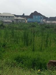 Land for sale Green filled estate  Ago palace Okota Lagos