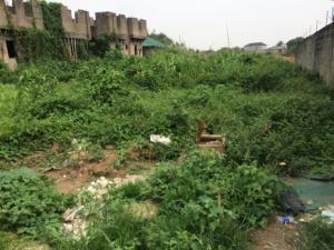 Residential Land Land for sale oshorun opic  Isheri North Ojodu Lagos