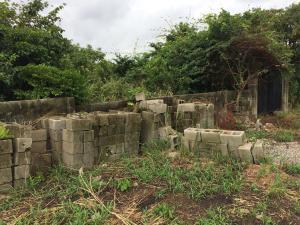 Residential Land Land for sale igbe road ikorodu Igbogbo Ikorodu Lagos