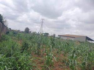 Mixed   Use Land for sale Onilekere Area Cement Ikeja Lagos Mangoro Ikeja Lagos