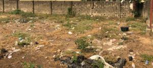Mixed   Use Land Land for sale Command Abule Egba Abule Egba Lagos