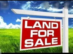 Residential Land Land for sale Bukuno Community road Okota Lagos