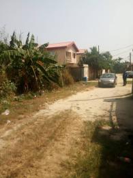 Mixed   Use Land Land for sale Ado Ajah Lagos