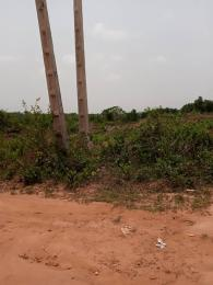 Residential Land Land for sale Agowa alight at atere, Imota, jogunro town,  Ikorodu Ikorodu Lagos