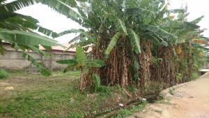 Residential Land Land for sale ogudu Ogudu GRA Ogudu Lagos