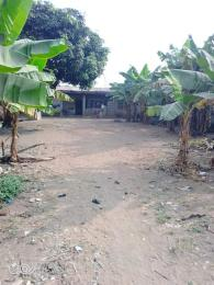 Commercial Land Land for sale Hostel Egbe Ikotun/Igando Lagos