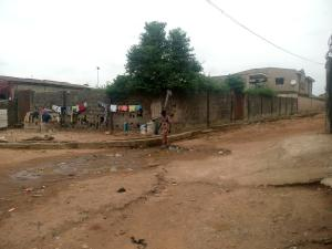 Mixed   Use Land Land for sale Shasha Akowonjo Alimosho Lagos