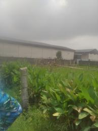 Residential Land Land for sale startimes estate Amuwo Odofin Amuwo Odofin Lagos