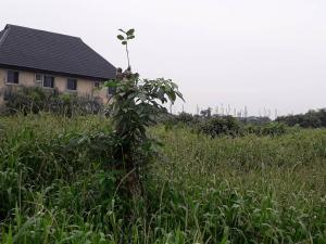 Residential Land Land for sale By Elemu Bus stop Bucknor Isolo Lagos