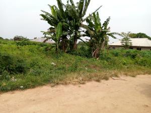 Residential Land Land for sale Imota close to Lagos rice industry Ikorodu Ikorodu Lagos