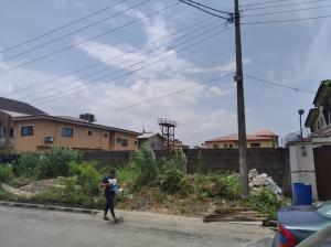 Residential Land Land for sale Durban estate Apple junction Amuwo Odofin Lagos