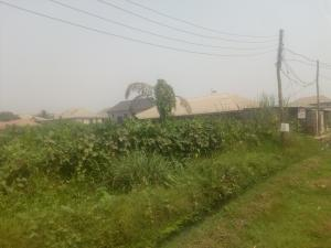 Residential Land Land for sale Idowu Rufai  Ago palace Okota Lagos