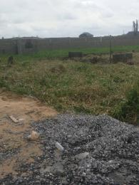Land for sale Startimes estate Apple junction Amuwo Odofin Lagos