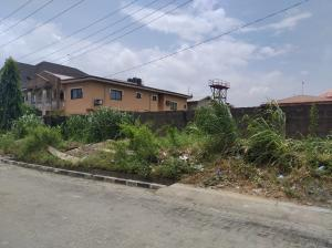 Residential Land Land for sale Lily estate  Apple junction Amuwo Odofin Lagos
