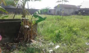 Land for rent Greenville Estate Badore Ajah Lagos