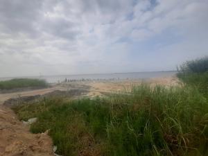 Residential Land Land for sale Lekki Palm City Estate Ajah Ajah Lagos