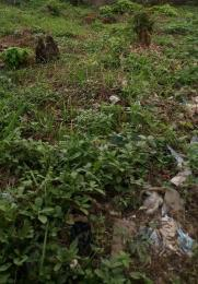 Residential Land Land for sale Ojoo Area, Aroro-makinde Ojoo Ibadan Oyo