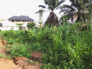Land for sale Cadbury Estate,ijoko Ado Odo/Ota Ogun