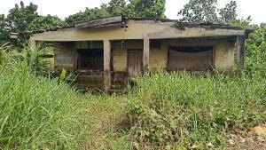 Mixed   Use Land for sale Almoruf Iyana Ipaja Lagos Iyana Ipaja Ipaja Lagos