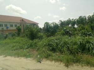 Land for sale Lasu Igando Ikotun/Igando Lagos
