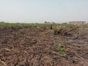Residential Land Land for sale Lekki Phase 2 Lekki Lagos