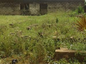 Land for sale  Close to Ayandeji Abebi/Okesuna Ado Odo/Ota Ogun