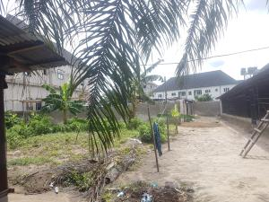 Residential Land for sale Off Peter Odili Road Trans Amadi Port Harcourt Rivers