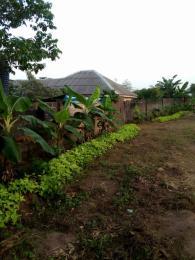 5 bedroom Commercial Land Land for sale Immaculate Estate Ph. 1 Ikorodu Ikorodu Lagos