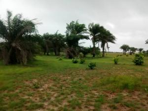 Land for sale United Estate Sangotedo Ajah Sangotedo Ajah Lagos