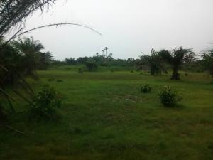 Residential Land Land for sale University View Estate, Opposite Lagos Business School,  Abraham adesanya estate Ajah Lagos