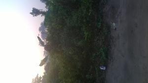 Residential Land Land for sale After Popular Stream View Estate. Atali Ph Atali Port Harcourt Rivers