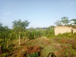 Residential Land Land for sale Agangan street, near Idi Iroko off Liberty Academy road Akala Express Ibadan Oyo